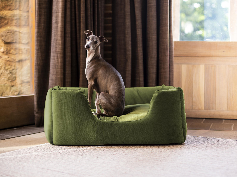charley-chau-deeply-dishy-luxury-dog-bed-in-velour-contrast-leaf-leaf-lime