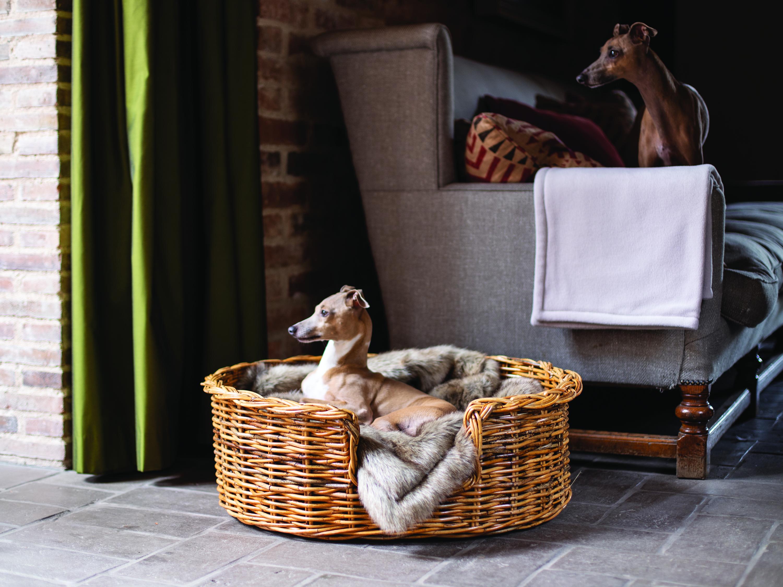 charley-chau-oval-rattan-dog-baskets-natural