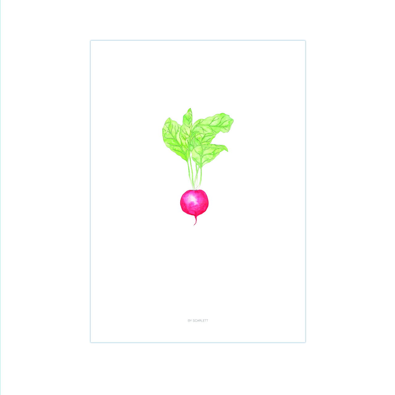 the-home-grown-collection-a3-print-pretty-radishing