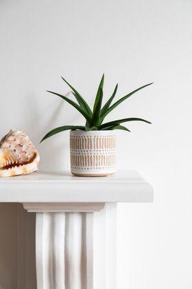 finn-ceramic-indoor-pot